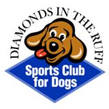 DITR Sports Club for Dogs